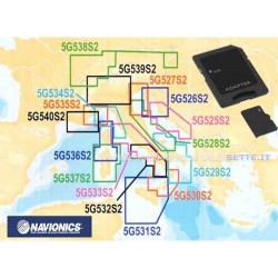 Cartografia Navionics Gold Small CF Card